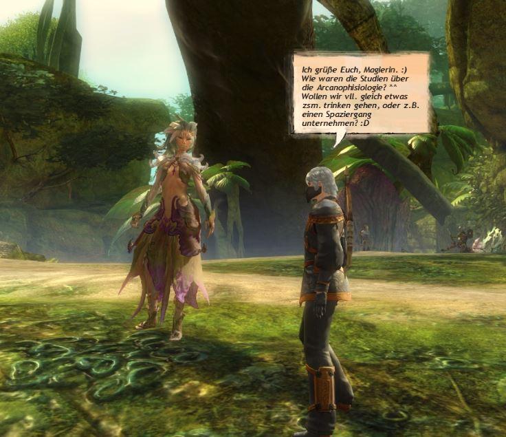 Rollenspiel Chat im MMORPG