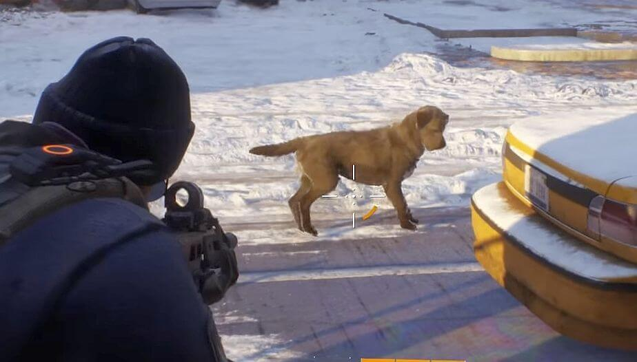 division-hund