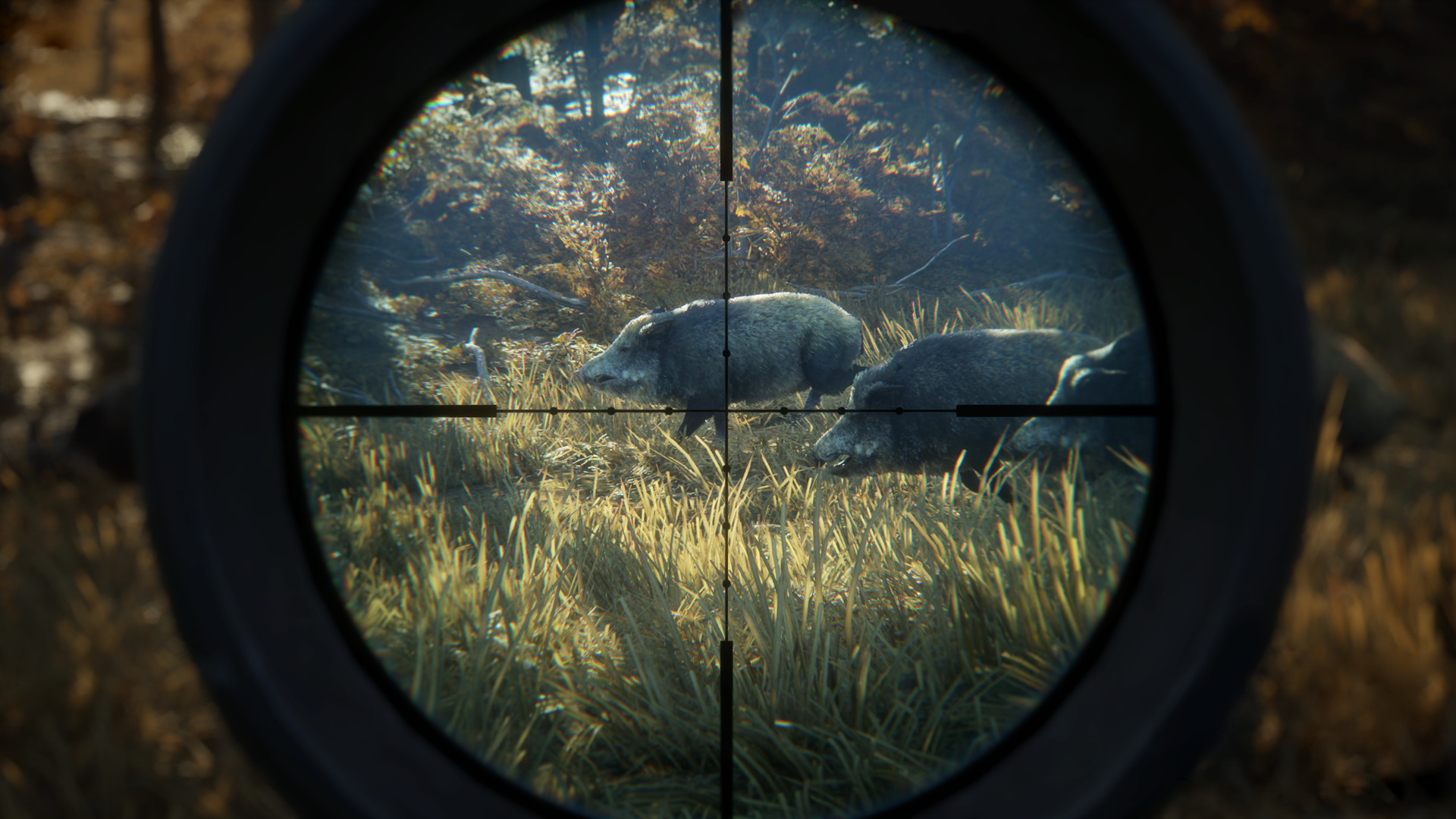The Hunter Call of the Wild 02