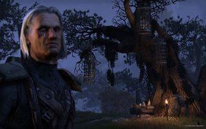 The Elder Scrolls Online - Auch hier es RP Gruppen geben.