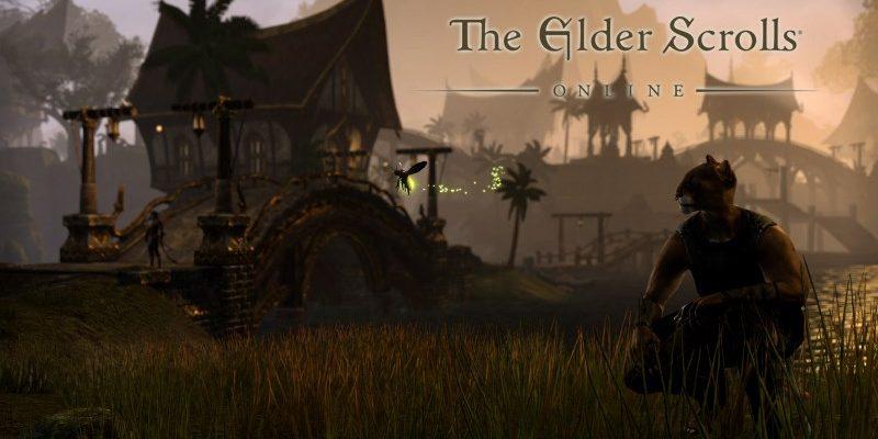 The Elder Scrolls Online: Overflow-Server und Kargstein angekündigt
