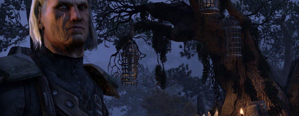 The Elder Scrolls Online lernt von Skyrim: NPC-Gesichter und Justiz-System