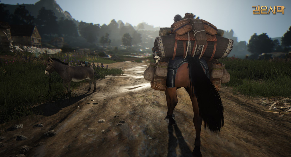 Black-Desert-Packesel