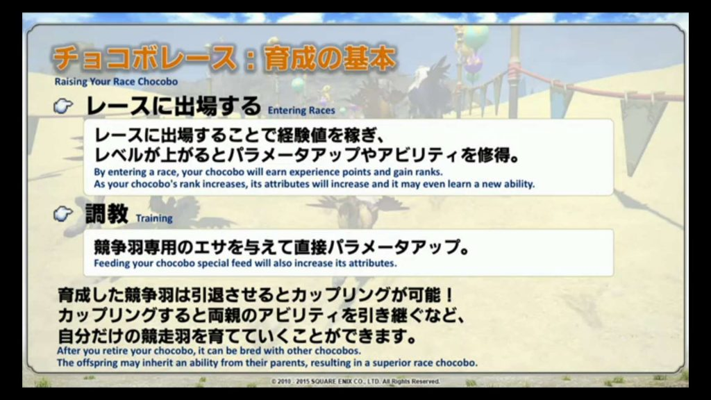 FFXIV-Chocobo-Racing2