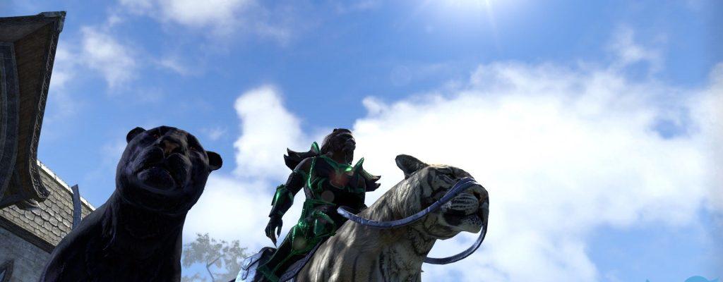 The Elder Scrolls Online: Bei TESO reiten Katzen jetzt auf Katzen