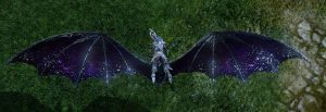 ArcheAge-Starlit-Wings