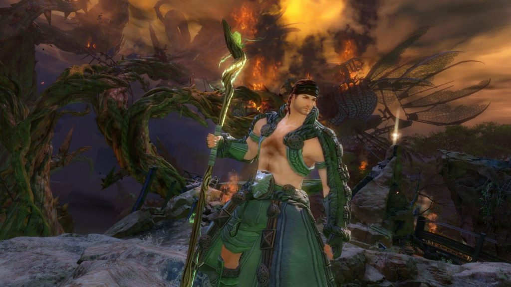 Guild Wars 2 Ranger Druide