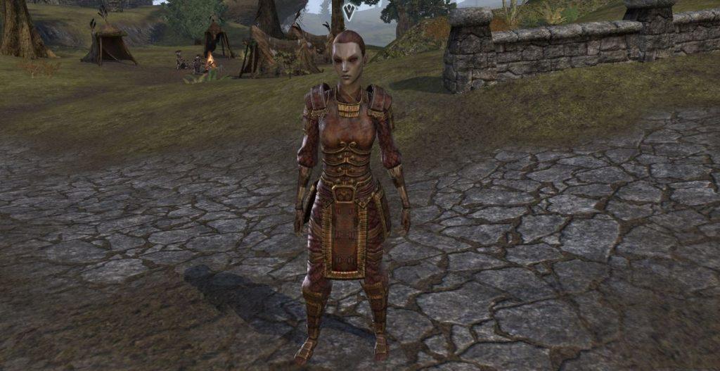 Elder Scrolls Online Kämpfergilde