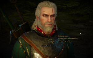 Witcher 3 Choices