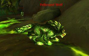 Wer will nicht einen modischen, grünen Wolf besitzen?