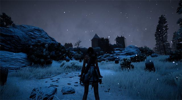 Black Desert: Stille Nacht, finstere Nacht