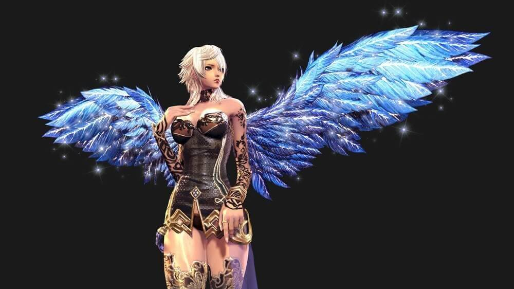 Blade and soul wings 1