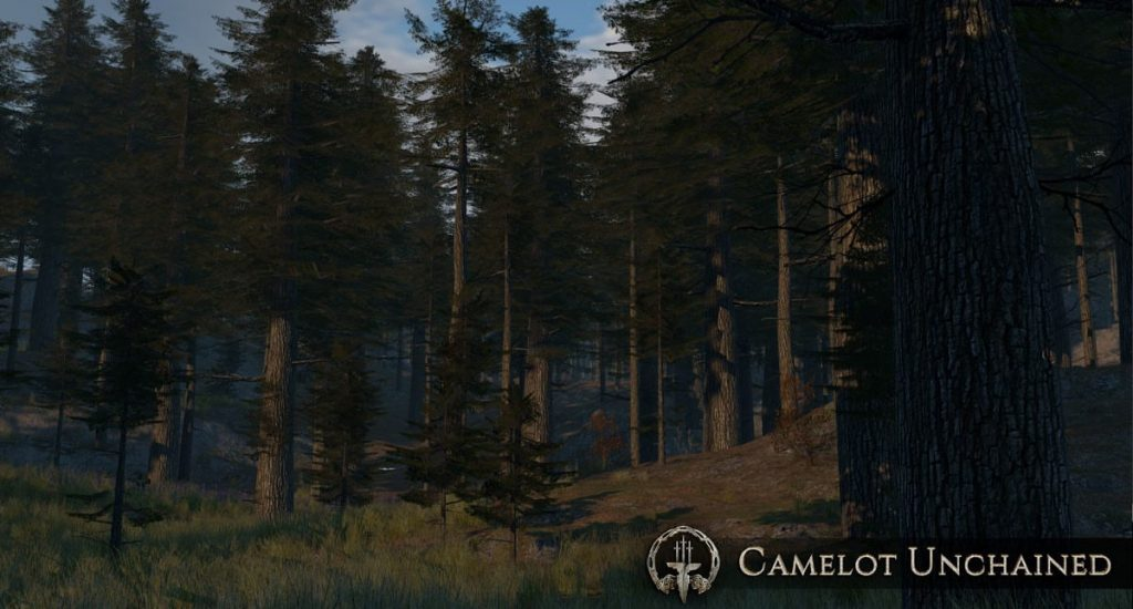 Camelot Unchained Wald