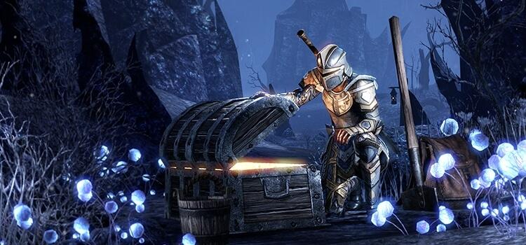 The Elder Scrolls Online: Der Typ, der 1 Millionen Dollar gewonnen hat, scheint ziemlich nett zu sein