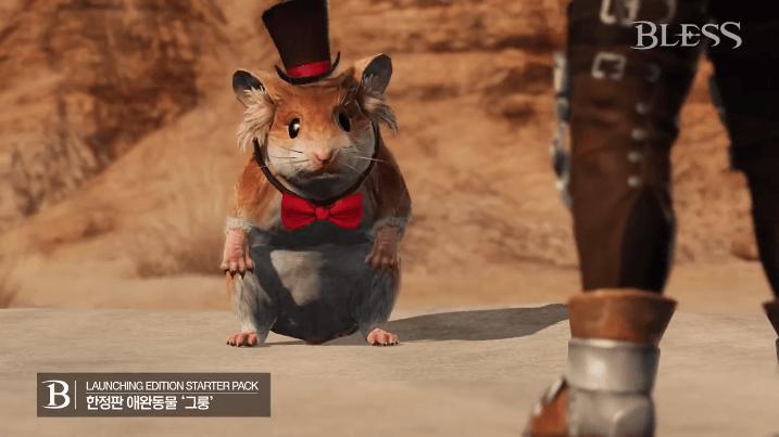 Bless Hamster Pet