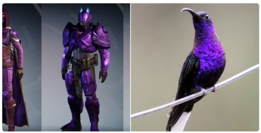 destiny-shader-vogel 4