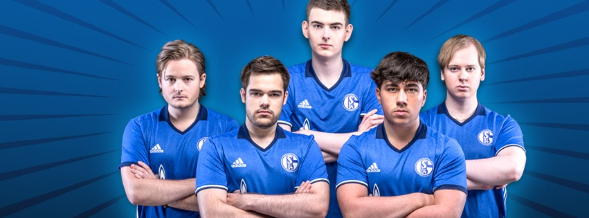 Schalke-Elements