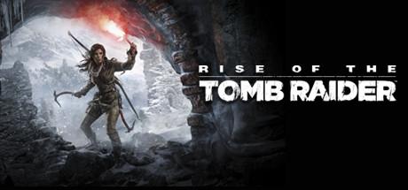 Tomb Raider Banner klein