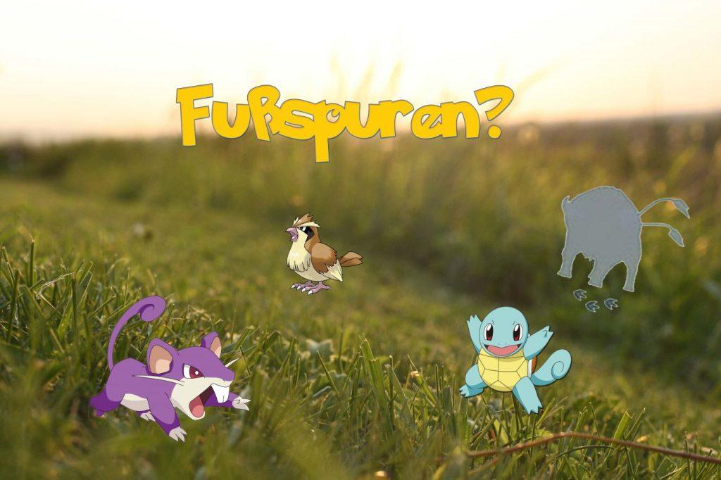 Pokemon-GO-Blätter rascheln - Fußspuren