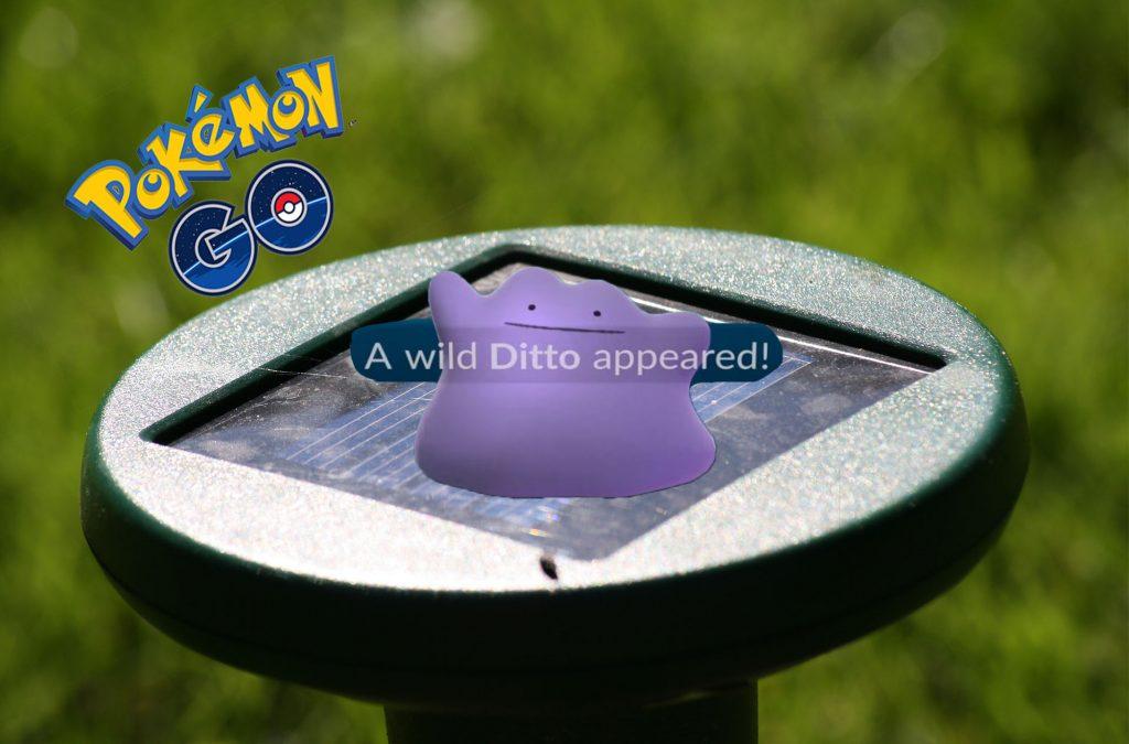 Pokémon GO Ditto Titel