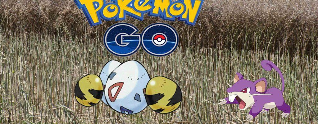 Pokémon GO: Ei ausbrüten – Tricks, Liste und Erklärungen