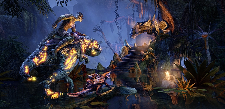 The Elder Scrolls Online: Kleinere, auf bestimmte Zielgruppen gerichtete MMORPGs sind die Zukunft