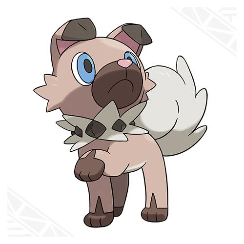 Hund Pokemon