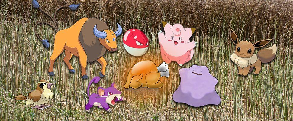 Pokémon GO: Thanksgiving-Event gestartet – So kommt Ihr an 4x XP!