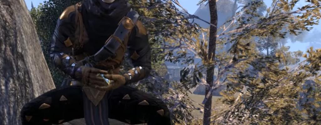 The Elder Scrolls Online: Kronenkisten öffnen erinnert an Kartenpacks in Hearthstone