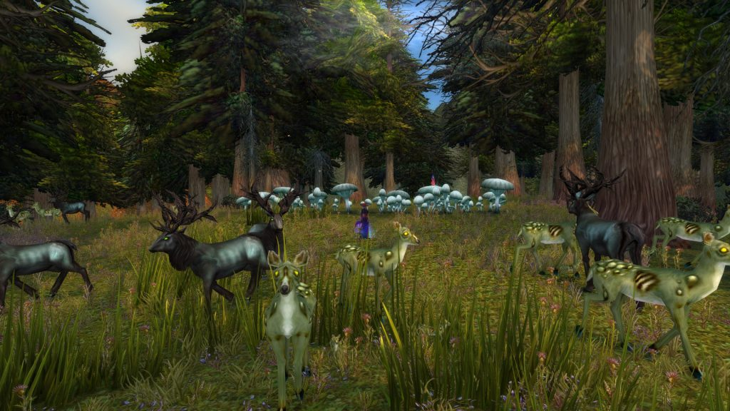 wow-mystery-fairy-drake-circle-wildlife