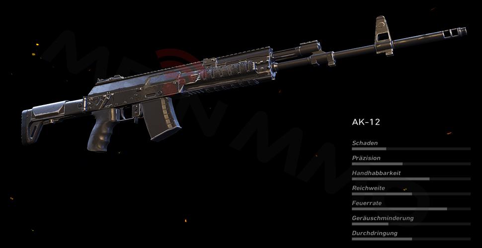 AK-12 PS