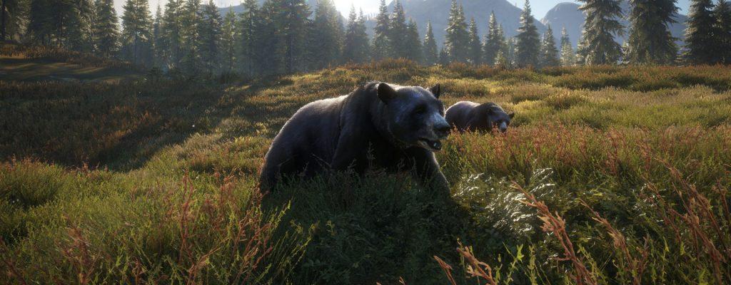The Hunter – Call of the Wild: Coop-Jagdsimulator für PS4 und Xbox One