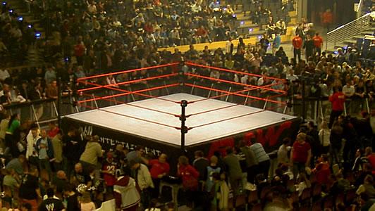 WWE Overwatch
