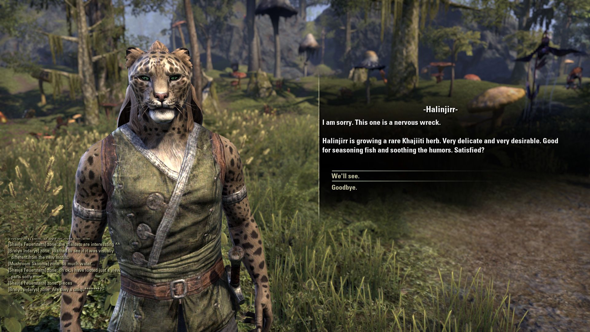 The elder scrolls online morrowind beta 04