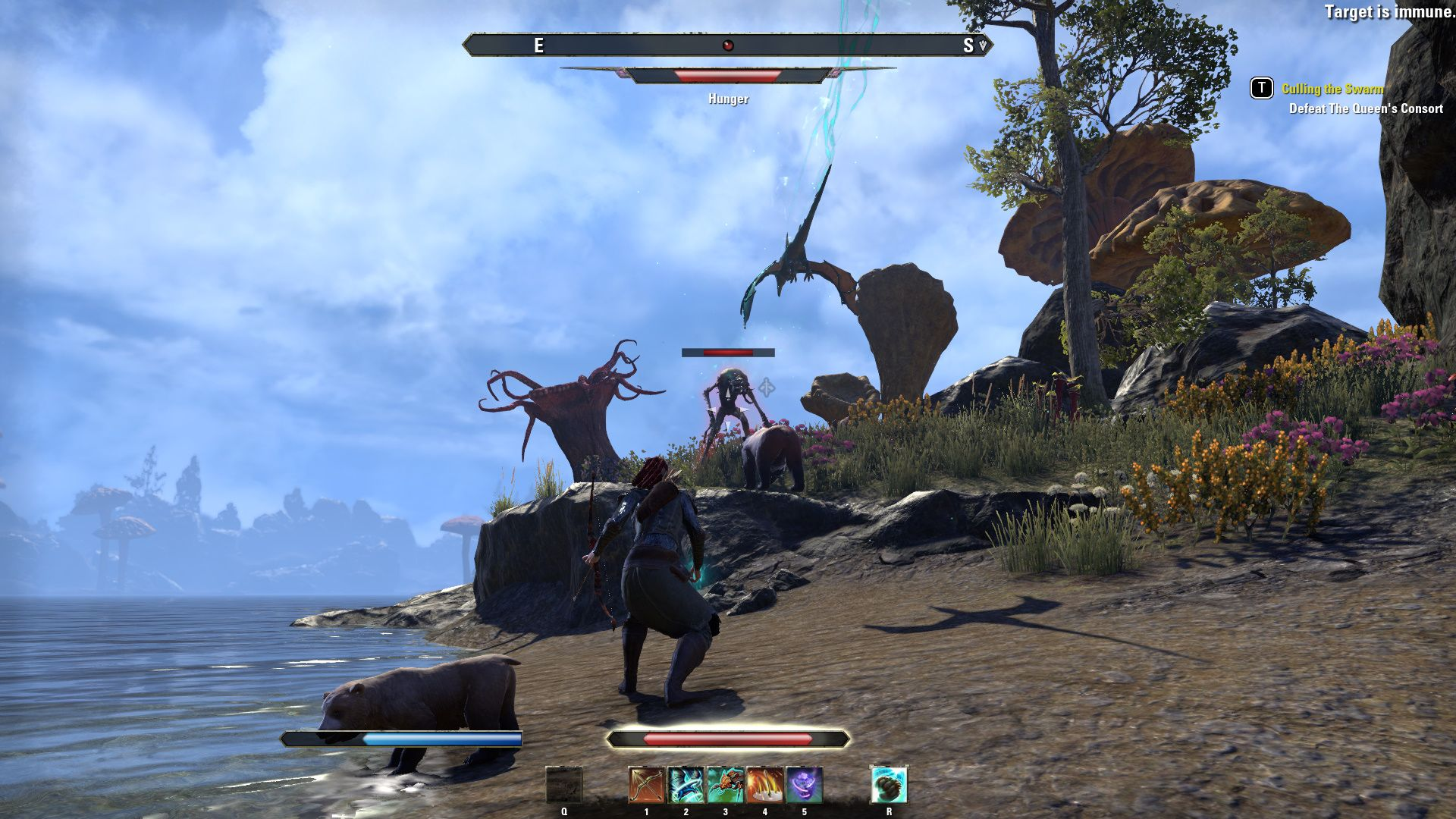 The elder scrolls online morrowind beta 13