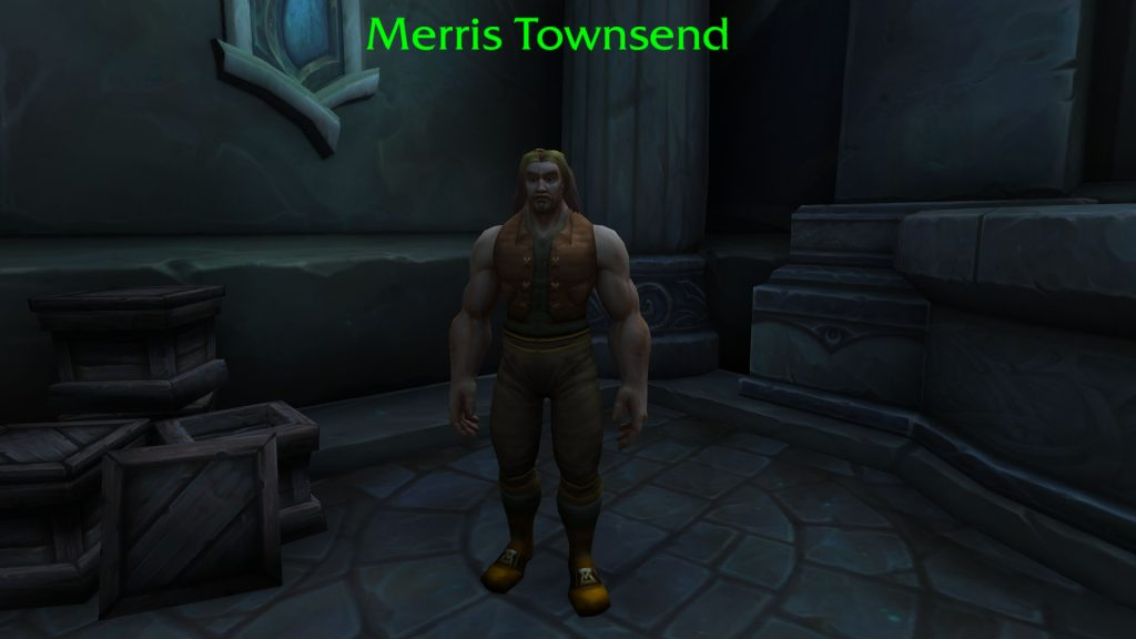 WoW Merris Townsend NPC Command Center