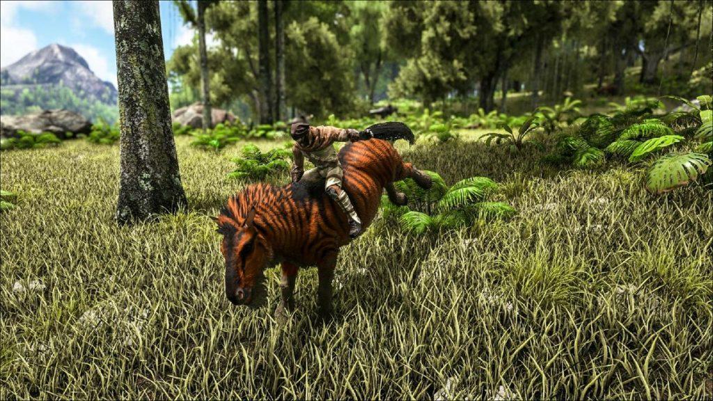 ark equus zähmen