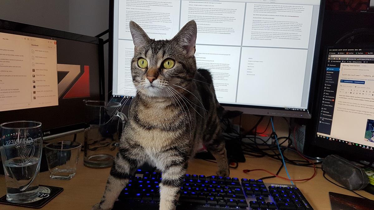 Juergen Katze