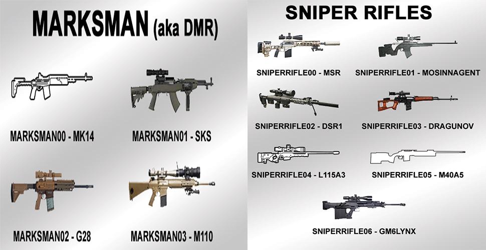 Wildlands PvP DMR Sniper