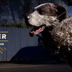 Far Cry 5 Boomer2