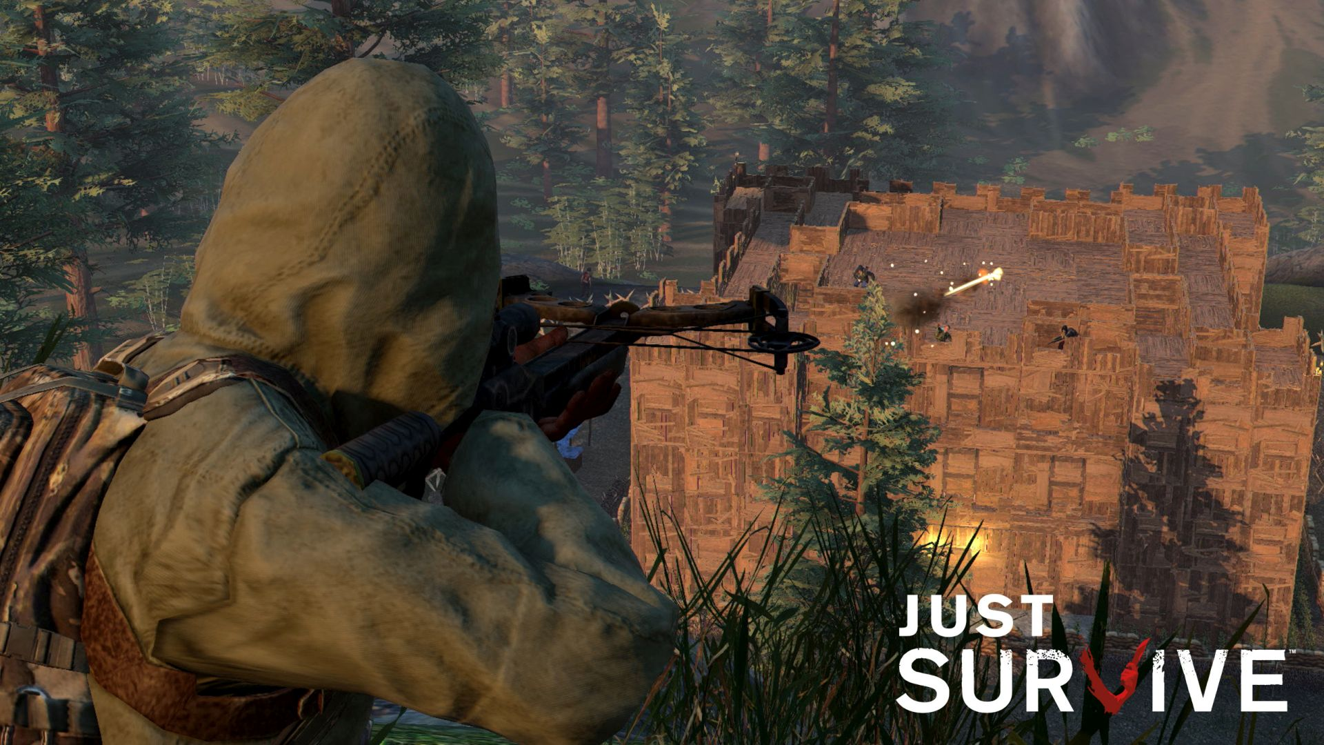 Just Survive01