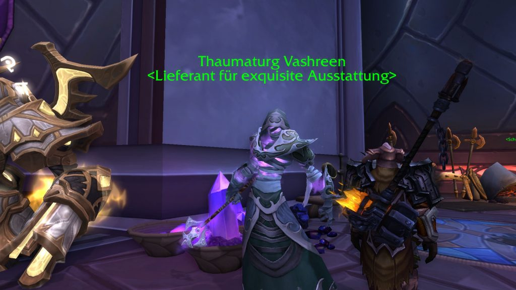 World of Warcraft Thaumaturg Vashreen Vindikaar