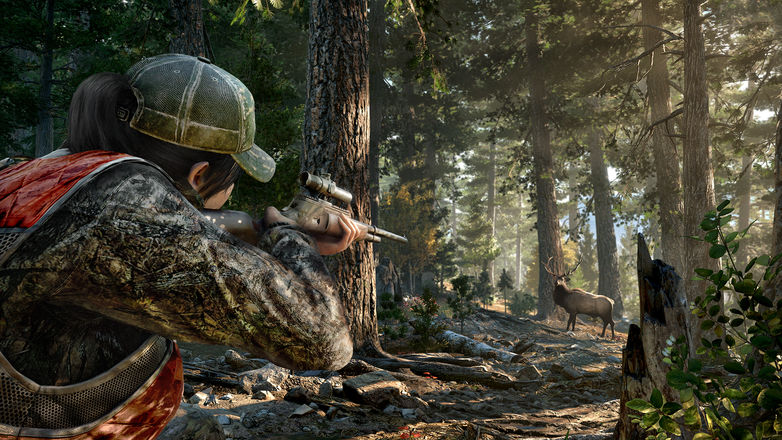 Far Cry 5 Sniper