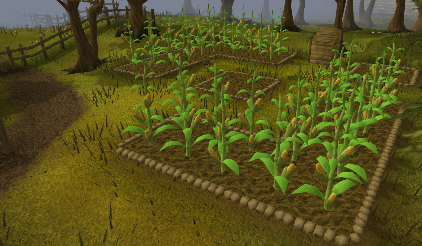 Runescape_ _Sweetcorn_Patch