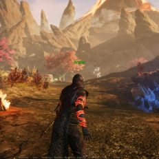 Ashes of Creation Gameplay 2