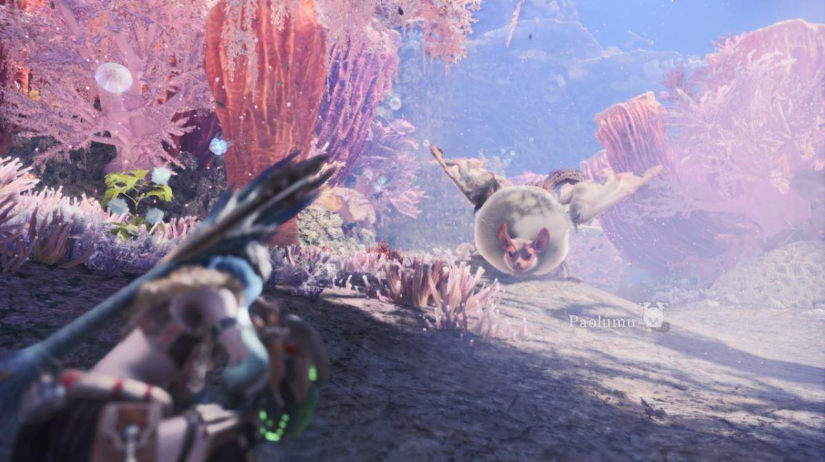 Monster-Hunter-World-Korallenhochland-Paolumu