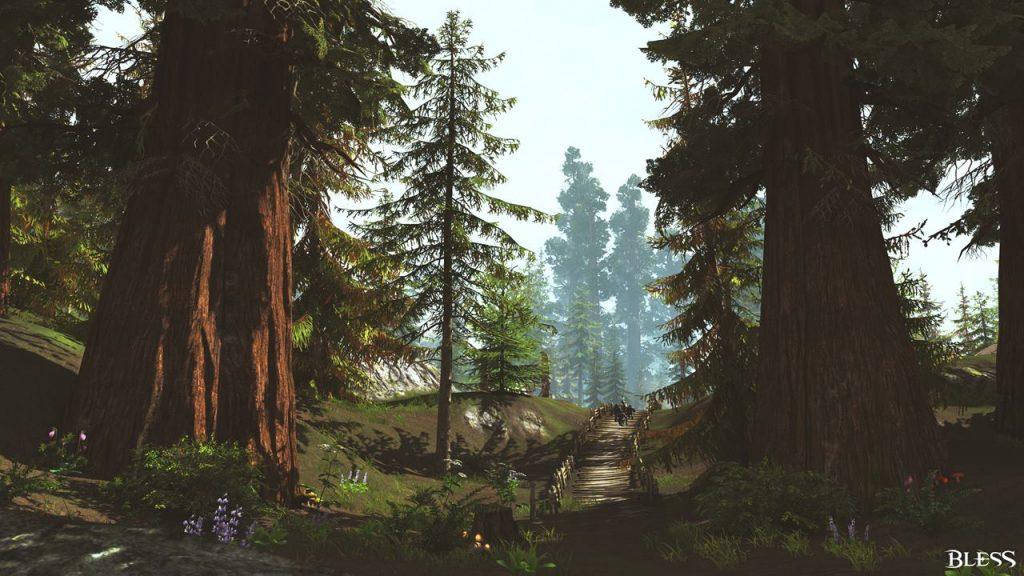 Bless Wald Umgebung