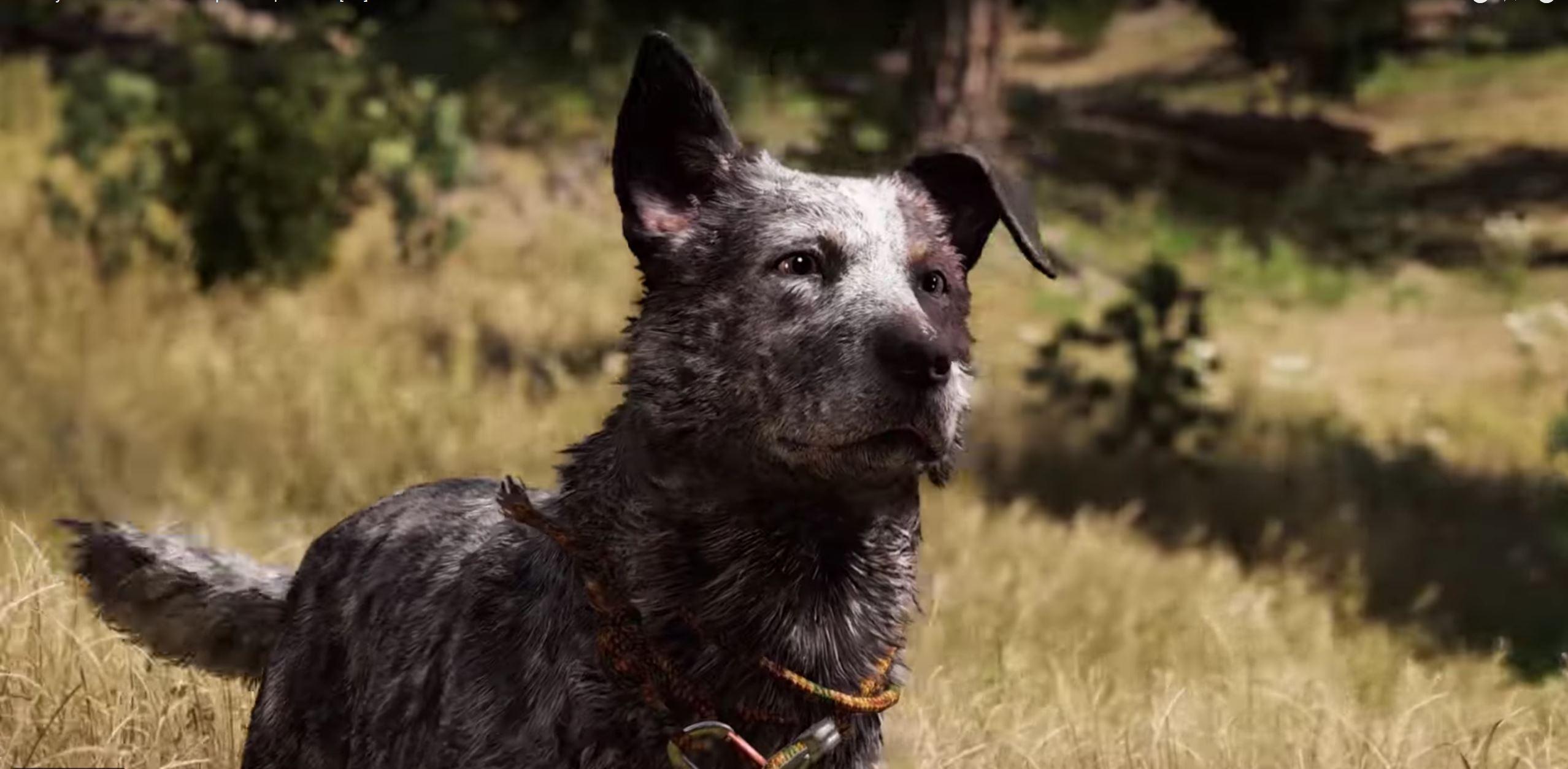 Far-Cry-5-Hund-02