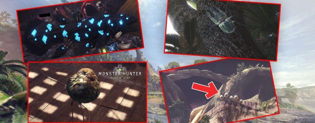 Hier findet Ihr die 4 seltenen Trophäen-Tiere in Monster Hunter World