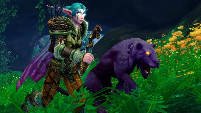 WoW Hunter Pet Night Elf